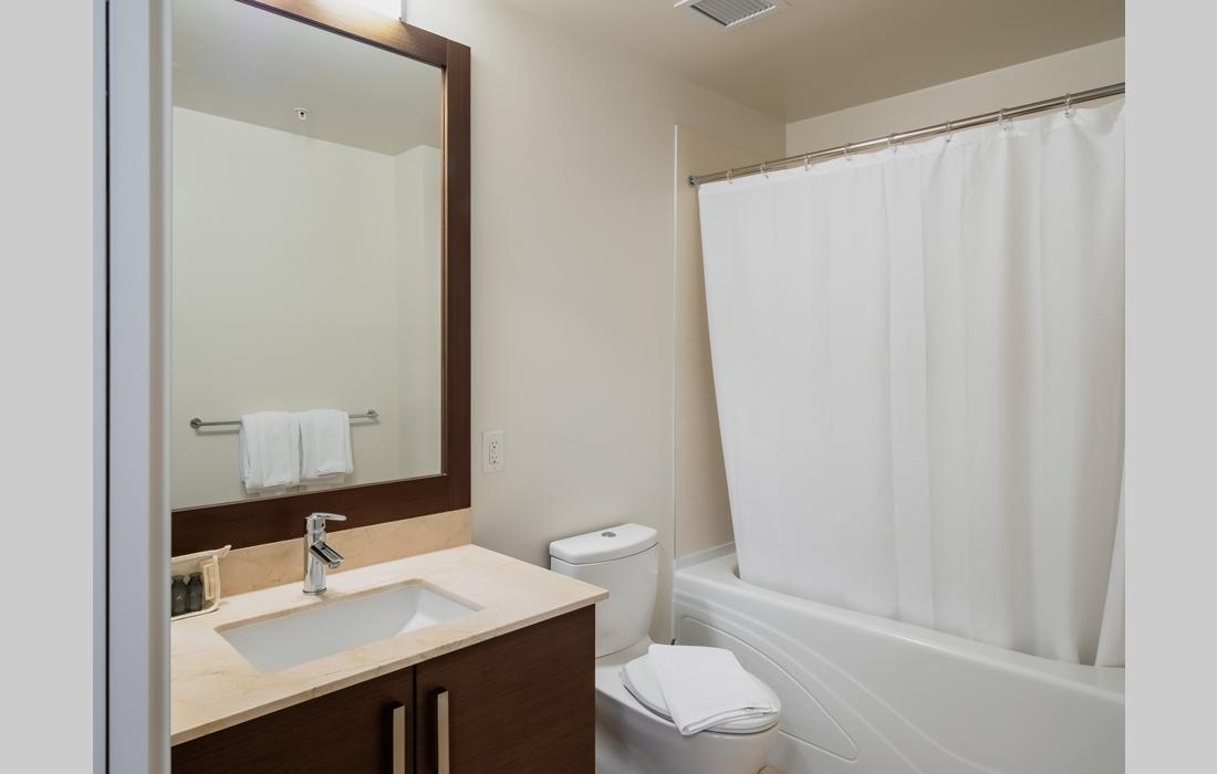 Synergy 407 bathroom