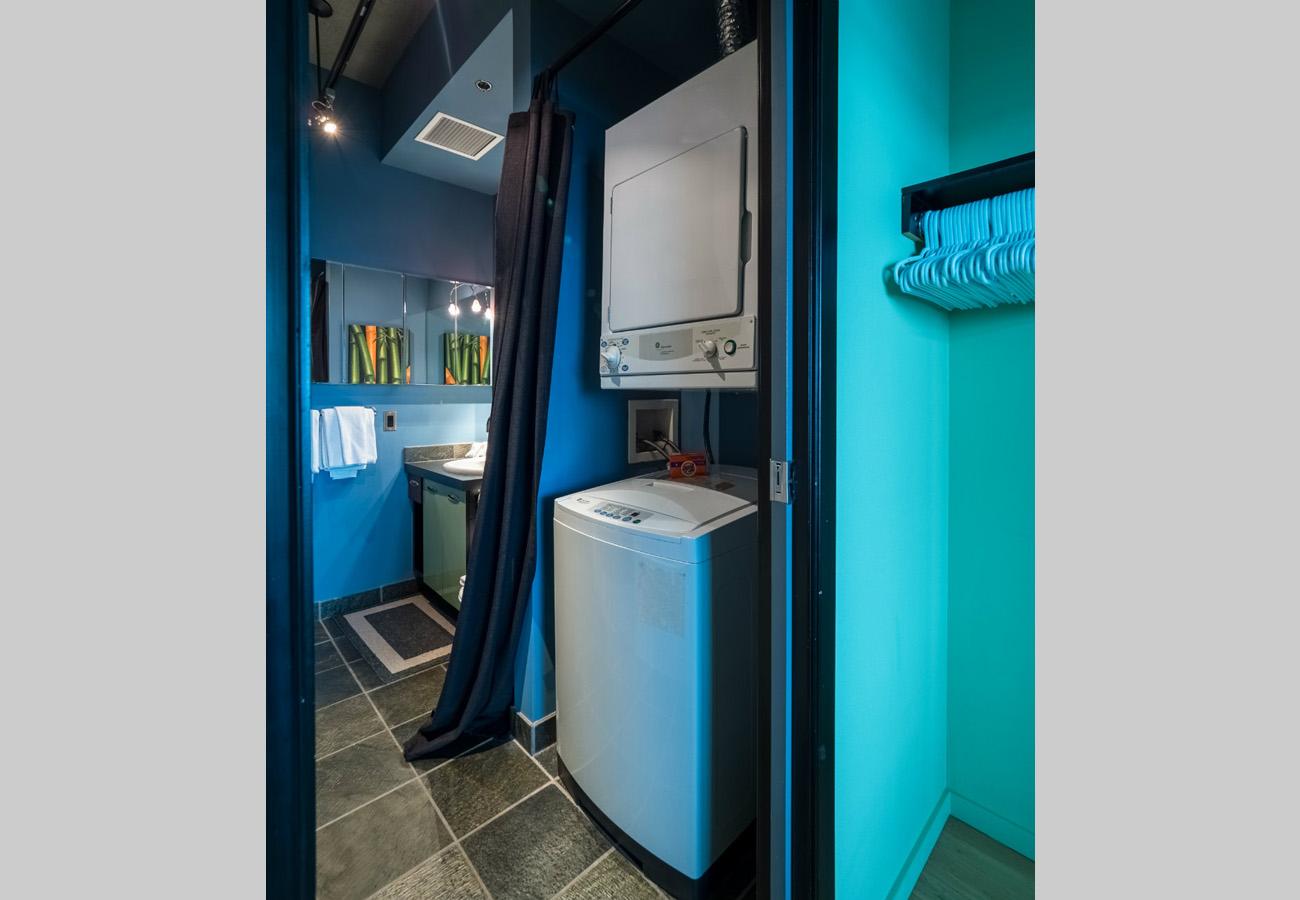 Insuite washer and dryer, penthouse condo, ensuite bath, walkthrough closet
