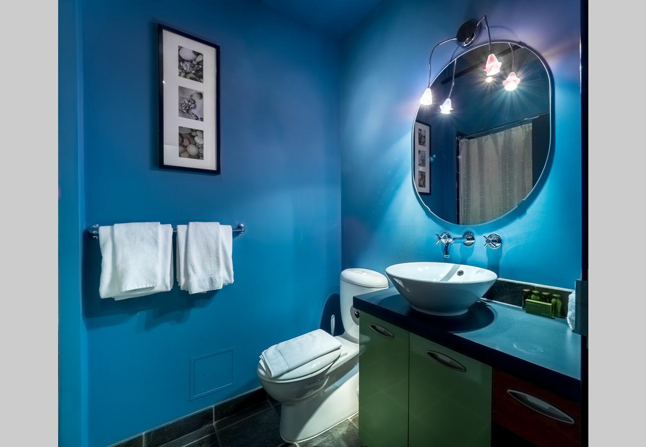 Penthouse condo ensuite bathroom