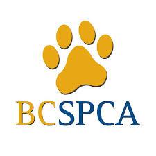 BCSPCA Website Logo